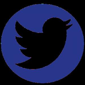 Logo Twitter Azul redondo